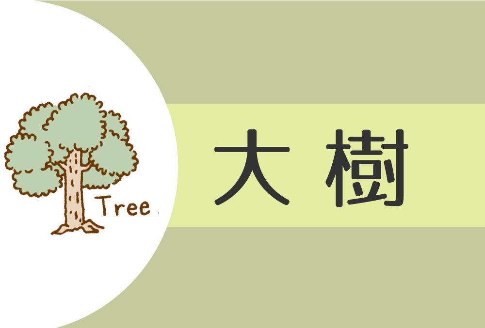 【2022年】大樹(甲)の人の性格や運勢、恋愛傾向や相性まで完全紹介!