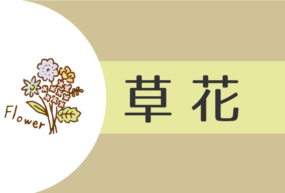 【2021年】草花(乙)の人の性格や運勢、恋愛傾向や相性まで完全紹介!