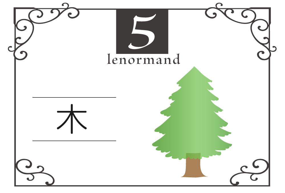 ルノルマンカード5番・木の意味は「健康、ルーツ、秘教」・キーワードや組み合わせ(コンビネーションリーディング)まで完全紹介【中立】